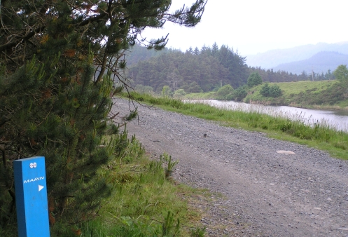 Lots of fireroads linking the singletrack sections. Great views though!