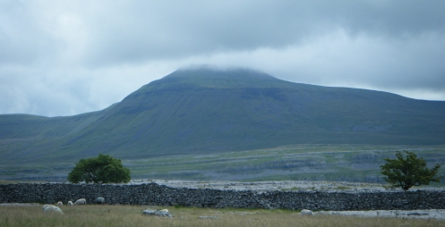 Ingleborough from Scales Moor.