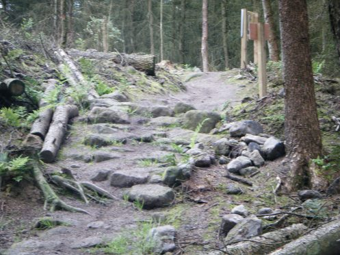 First obstacle on the black run.